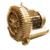 Cheap 25HP Aluminium Alloy Goorui Side Channel Blower for Central Vacuum System for sale