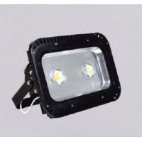 Cheap 100W outdoor led lights IP65 supplier for sale