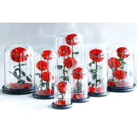 Cheap Wholesale New Design Preserved flower  Eternal Rose in Glass Home Decoration for sale