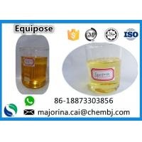 Cheap Equipose /Boldenone Undecylenate/EQ  Injectable SteroidsCAS 13103-34-9 for sale