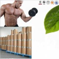Bulking Cycle Methyltrienolone Metribolone Steroid Powder CAS 965-93-5 Manufactures