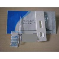 Cheap Hbsag Rapid Test Kit Serum/Plasma/Whole Blood Test for sale