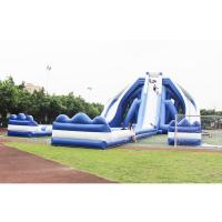 Cheap Overlength Giant Inflatable Castle Slide , Outdoor Inflatable Water Slide for sale