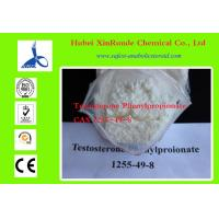 Cheap 1255-49-8 Cutting Cycle Steroids Testosterone / Testosterone Phenylpropionate for sale