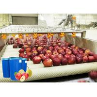 Cheap Ss 304 Apple Processing Line / Fruit Chips Making Machine High Level Sanitation for sale
