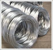 Cheap Electro Galvanized Iron Wire for sale