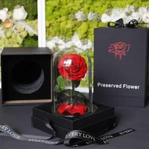 Cheap 2021 popular Preserved Roses Long lasting Roses in Dome Valentines Day Gift for sale