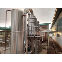 Cheap 600T/D SS304 Food Grade Tomato Ketchup Processing Plant for sale