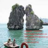 Cheap Express Special Line To Vietnam/cambodia for sale