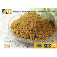 Purity Easy Absorb Fish Powder Fertilizer / Fish Meal Feed For Shrimp