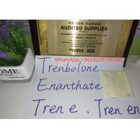 Cheap Muscle Building Trenbolone Enanthate Powder Tren Enan Raw Steroid Hormone for sale