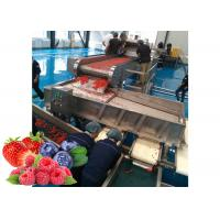 Cheap Dried Fruit SUS 304 Berry Processing Equipment for sale