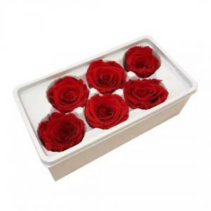 Cheap preserved flower eternal rose preserved flower rose  natural preserved rose for sale