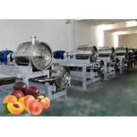 Cheap 3tons/Day PLC Control Peach Apricot Fruit Processing Line for sale