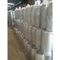 Quality US standard beer keg 5gallon capacity slim shape, with Sankey D type spear for wholesale