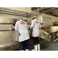 Cheap Customized 10T/H SS Mango Pulp Production Line for sale