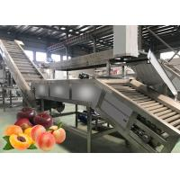 Cheap Multiple Use Safety Peach Processing Plant High Extracting Rate 1000 T/Day for sale