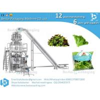 China Lettuce packaging machine  cabbage packaging machine on sale