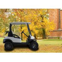 2 Seater Golf Buggy Golf E Car