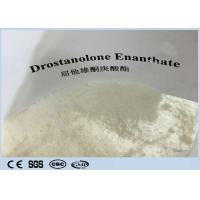 Cheap Cutting Cycles  Anabolic Masteron Steroid White  Powder Drostanolone Enanthate  For Anti Aging CAS472-61-145 for sale