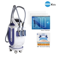Cheap Double Chin Removal 690nm Fda Approved Cryolipolysis Machine for sale