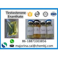 Cheap Testosterone Enanthate / Test E Injectable Muscle Building Steroid White Crystalline Powder for sale