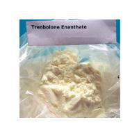 Cheap High Purity Tren Bodybuilding Supplement , Trenbolone Enanthate Powder for sale