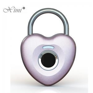 China Electronic Fingerprint Door Lock Home Depot , Fingerprint Keypad Door Lock on sale