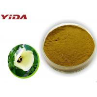 Cheap Safety Pharmaceutical Grade Okra Extract Powder Activate Male Central Nervous for sale