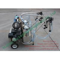 Cheap AutomatedGasoline Engine Mobile Milking Machine Dairy Milking Equipment for sale