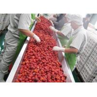 Cheap Industrial Mulberry Raspberry Berry Processing Equipment High Stability for sale