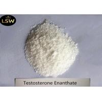 Cheap White Powder Bodybuilding Anabolic Steroids Testosterone Enanthate CAS 315-37-7 Purity 99% for sale