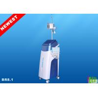 Four handles /three handles/Dual Handle Cryolipolysis Lipolaser Beauty Equipment For Coolsculpting Shaping BR8.1