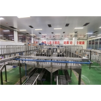 Cheap 304 Stainless Steel Tomato Processing Line PP Container Packaging for sale