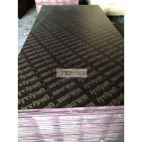 Quality Black Film Faced plywood 12mm/15mm/18mm/20mm with 48 hours boiling water resistance and excellent effect of demoulding wholesale