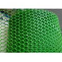 Cheap 250gsm Plastic Netting Mesh for sale