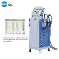 Cheap 690nm 4 Handles Cellulite Reduction Cryo Slimming Machine for sale