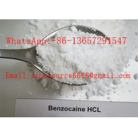 Cheap Pain Killer Local Anaesthesia Drugs , Pure Benzocaine Powder Cas 94 09 7 99% Assay for sale
