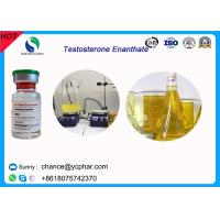 Cheap High Purity Injectable Testosteroneenanthate / Test E Steroids 100mg/Ml 300mg/Ml For Bodybuilding for sale