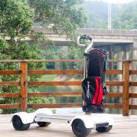 Cheap 4 Wheel Golf Cart Scooter EcoRider 60V Electric 2000w With Removable Handle for sale