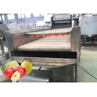 Cheap Professional Pear Chips Apple Processing Line 440V Turnkey Project for sale