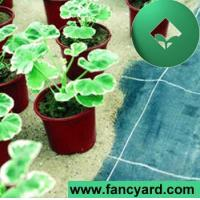 Cheap ,weed Barrier Fabric,Weed Control Fabric,Anti-grass Net for sale
