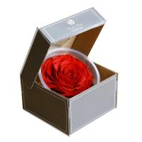 Cheap 9-10cm Dried Preserved Flower Roses Forever Gift for Birthday Valentines Christmas Day 1pcs/box for sale