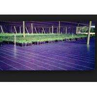 Cheap weed blocker mat weed killer fabric for sale