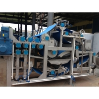 Cheap Beverage 440V 20T/H Pineapple Juice Processing Line for sale