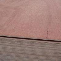 Cheap Bintangor Plywood with Poplar Core, BB/BB, BB/CC Grade and 200 to 300 USD/CBM, Used for Furniture for sale