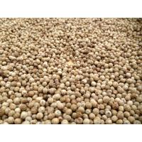 Buy cheap Black and White Pepper from wholesalers