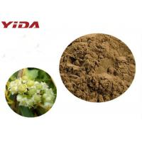 Cheap YIDA GMP Certification Dodder Seed Extract Powder Remedy Sexual Problems for sale