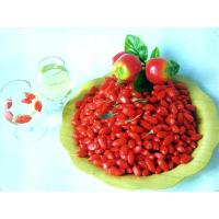 Ningxia Dried Goji Berry (Wolfberry),Dried Organic Gojiberry Fruit / Chinese