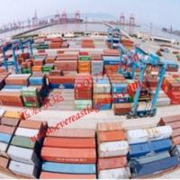 Cheap Lcl Cargo Shipping To Muara From Shenzhen, China for sale